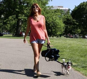 woman and dog walking with Wrapsit covered closed folding quad chair LeisureEase, LLC