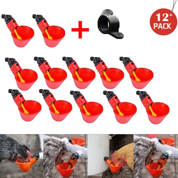 Feed Automatic Bird Coop Poultry Chicken Drinker Water Drinking Cups 12Pcs
