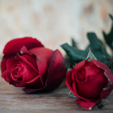 Load image into Gallery viewer, 50Pcs Rose seeds in bulk and red roses in four seasons indoor flowers