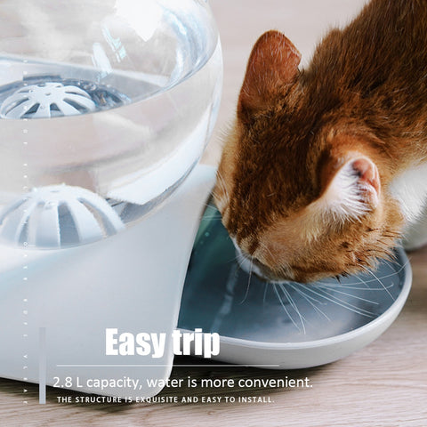 Cat's Bubble Water Feeder