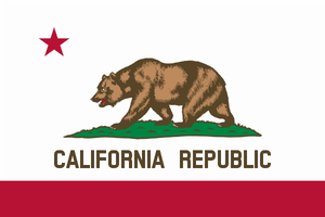 California State Flag - Various Sizes - bbi Flags