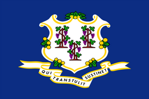Connecticut State Flag - Various Sizes - bbi Flags