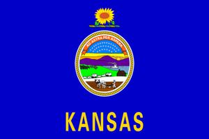 Kansas State Flag - Various Sizes - bbi Flags