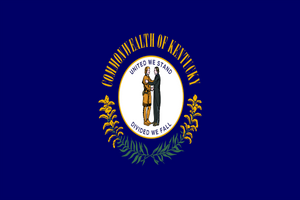 Kentucky State Flag - Various Sizes - bbi Flags