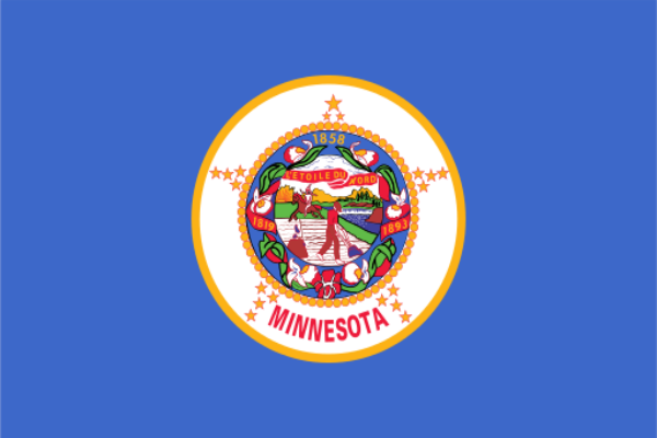 Minnesota State Flag - Various Sizes - bbi Flags