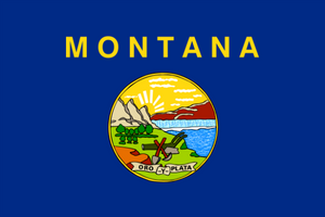 Montana State Flag - Various Sizes - bbi Flags