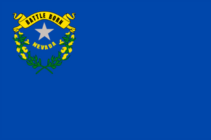 Nevada State Flag - Various Sizes - bbi Flags