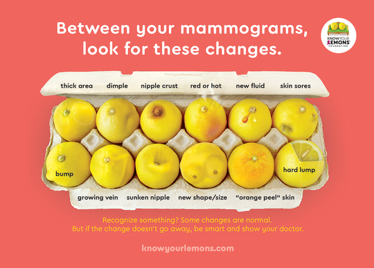 Changing Breast Cancer Education One Lemon At A Time