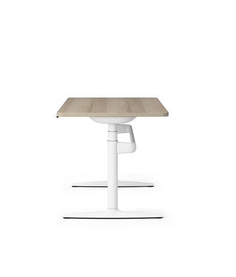 Atlas Sit Stand Desk