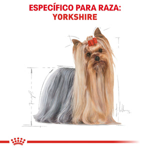 Alimento Royal Canin para Yorkshire Terrier 4.5kg Alimento Seco Perros Royal Canin