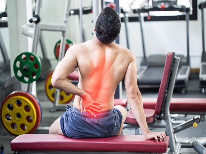 What organs can cause lower back pain? 8 Organs That Might Be the Culprit…