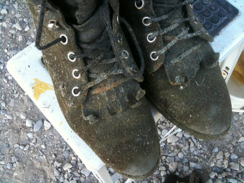 Moldy Shoes