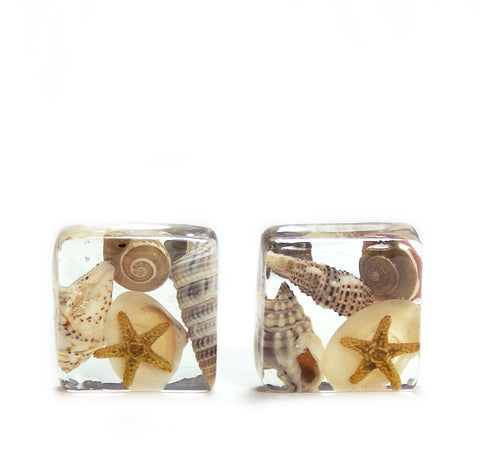 Square Seashell Resin Earrings