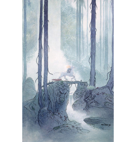 In the Deep Woods - Limited Edition Signed Art Print