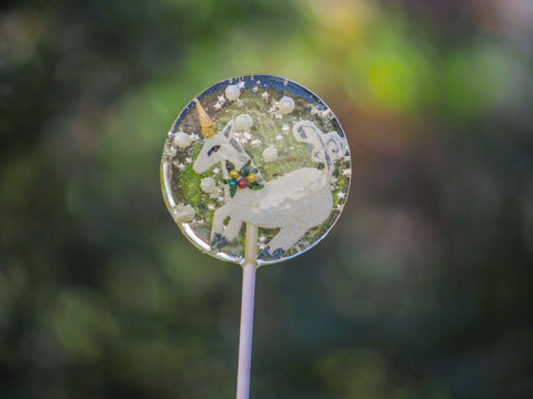 Enchanted Unicorn Clear Lollipop (One)