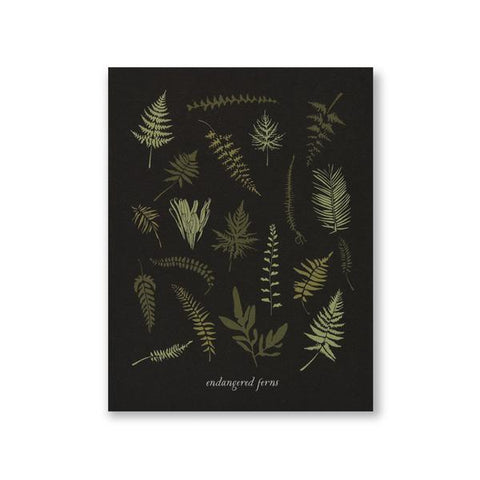 Endangered Ferns Art Print