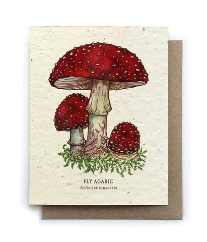 Fly Agaric Greeting Card w Plantable Seed Paper