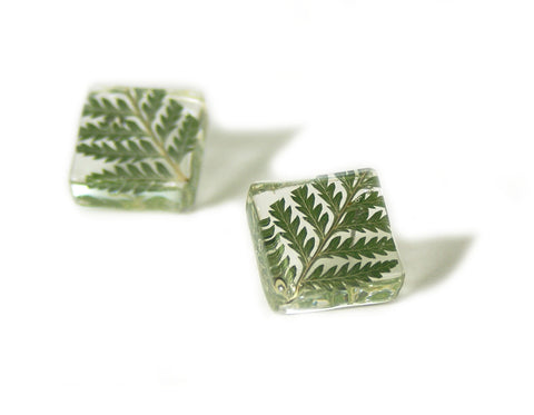 Fern Resin Earrings