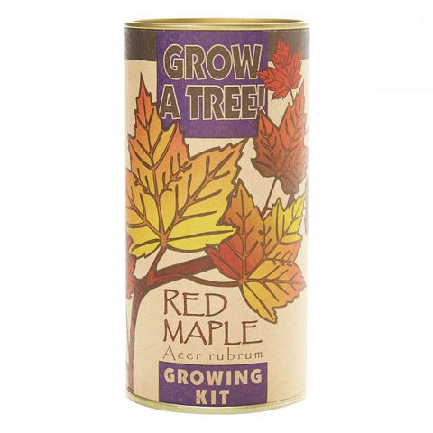 Red Maple Tree Kit