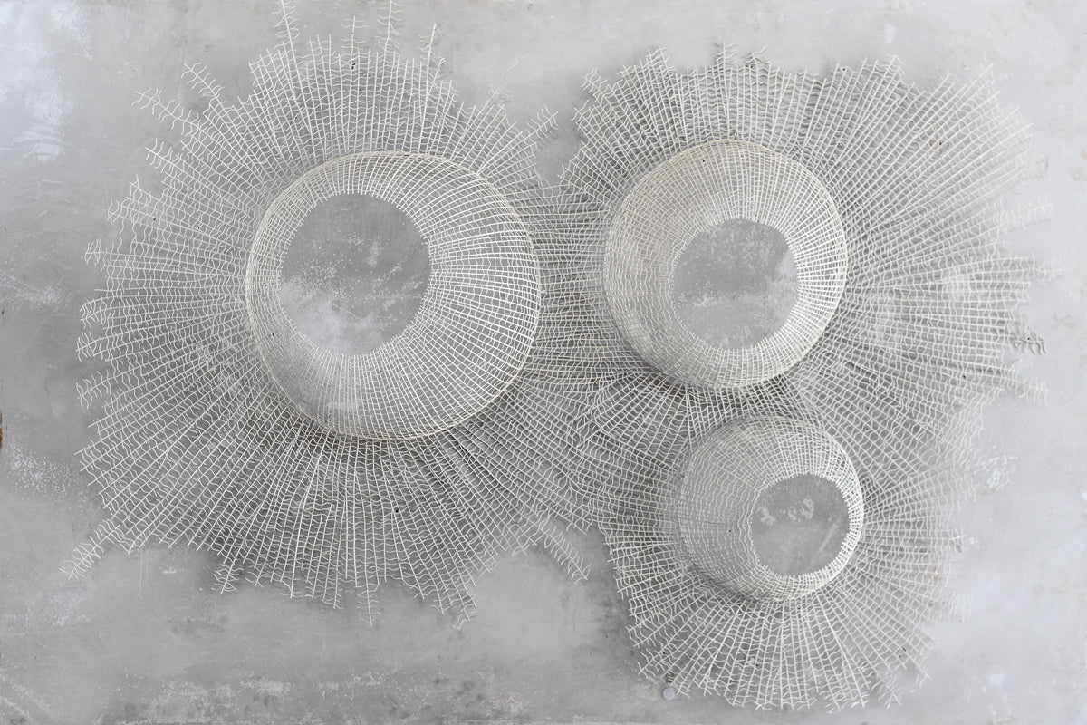 Sea Urchin Wire With Mirror