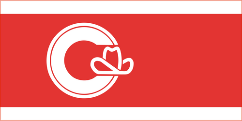 City of Calgary Flag