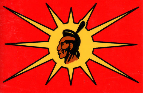 Treaty 7 Confederacy First Nations Flag