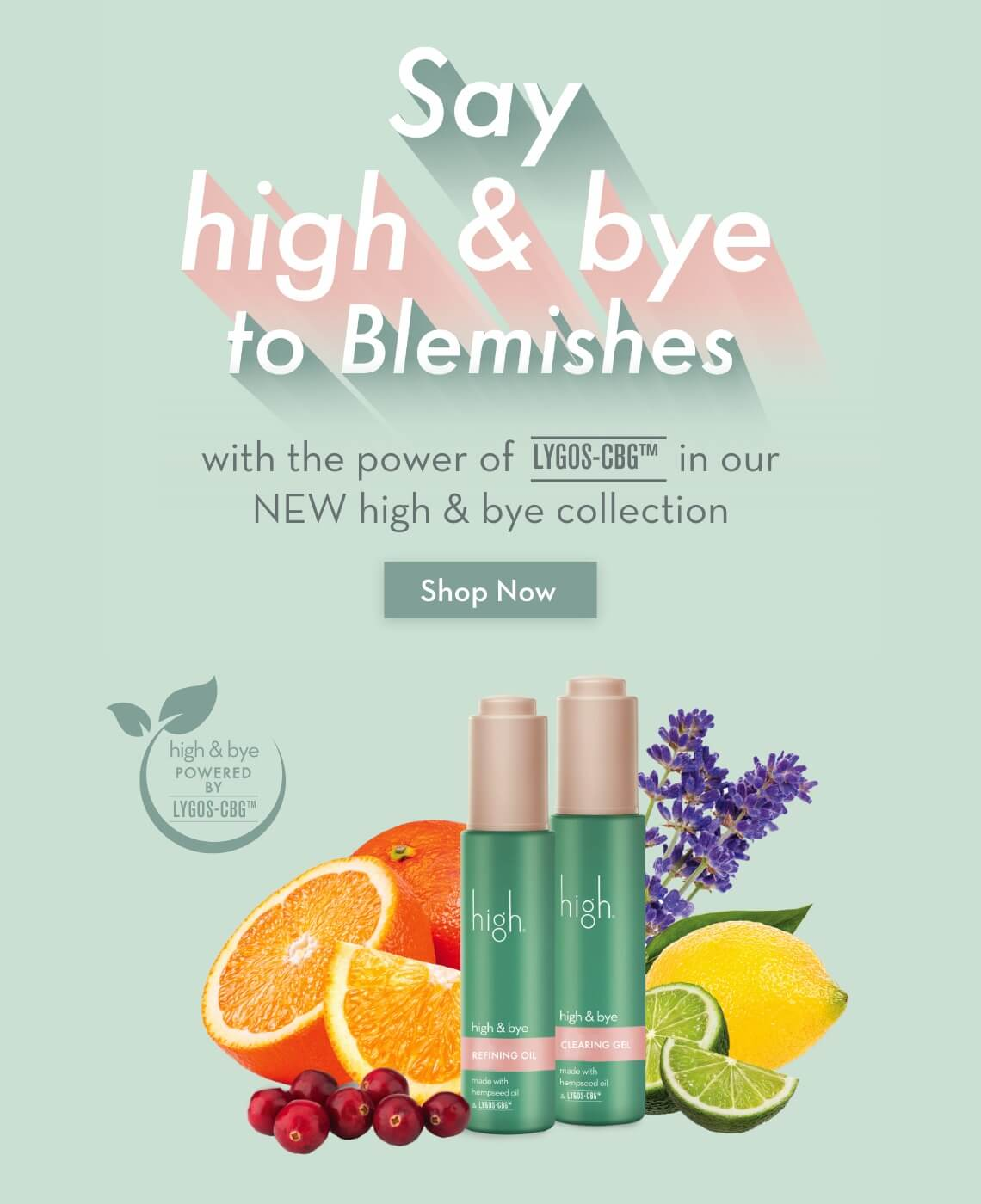 Say high & bye to blemishes with high & bye!