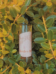 """Paradise Punani"" - WOMEN BEAUTIFUL FRAGRANCE OIL"