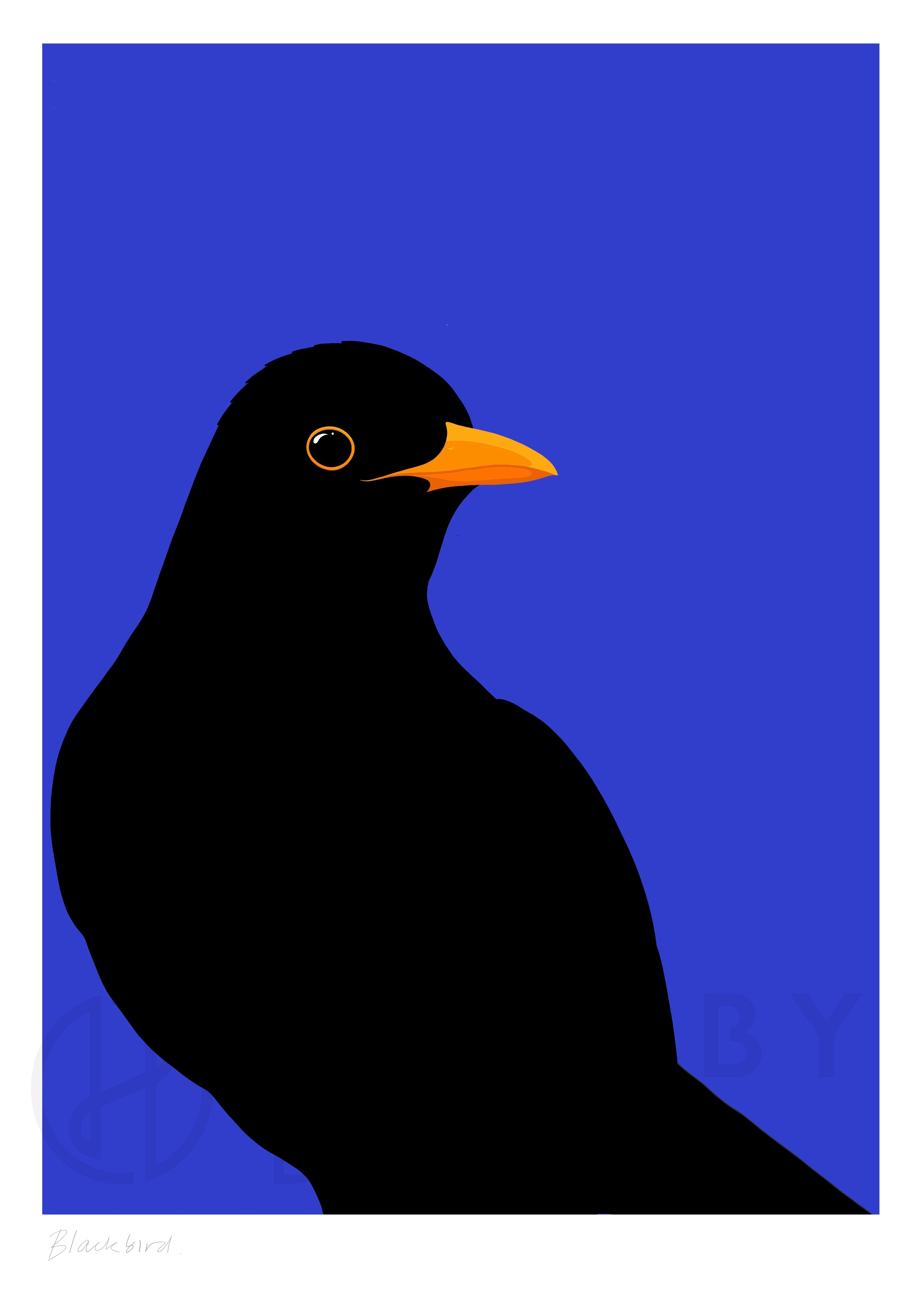 Watermarked art print of the blackbird