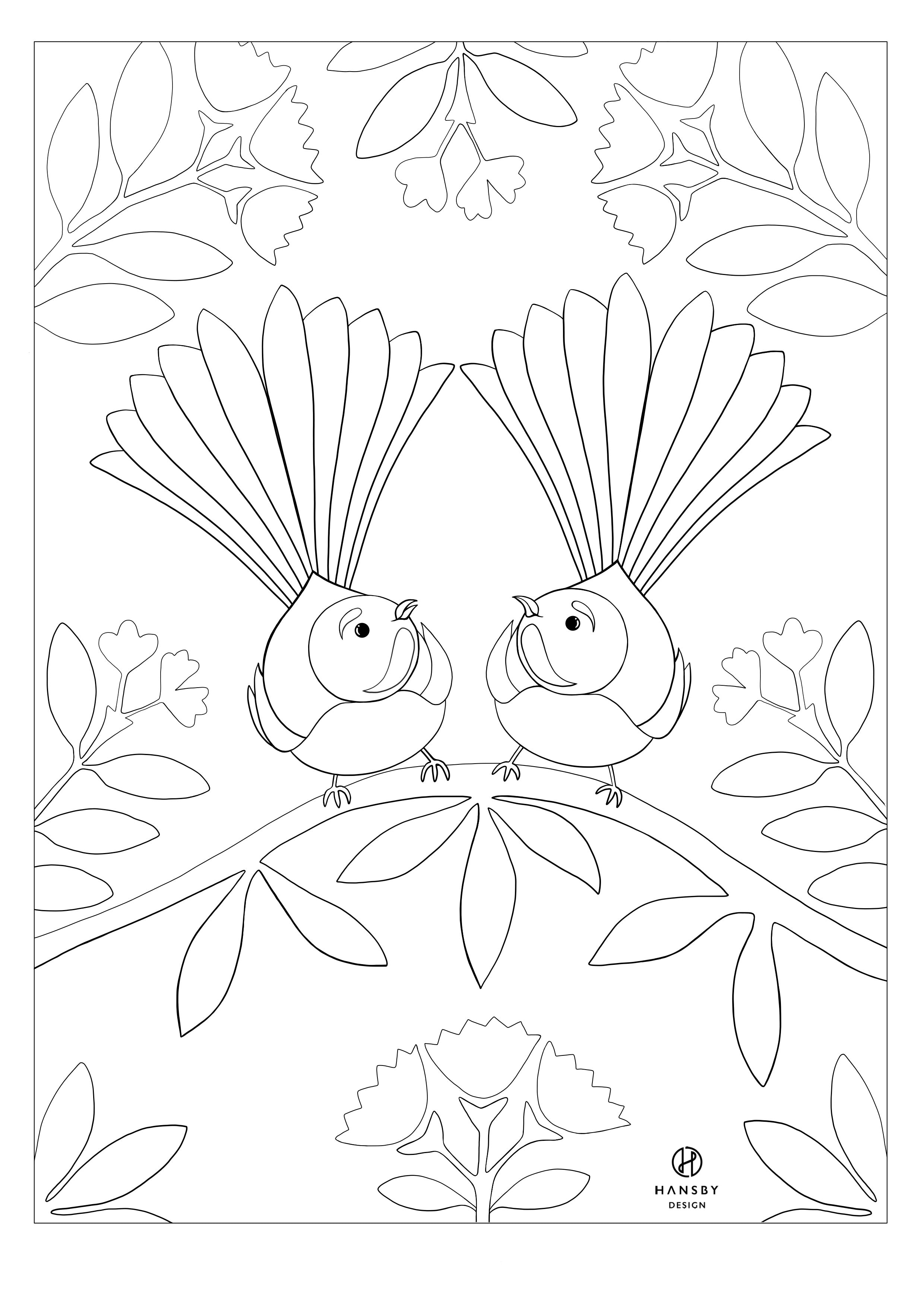 Fantail Colouring printable