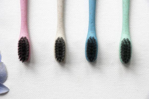 Charcoal toothbrush with wheat stalk handle. 4 colours to choose from.