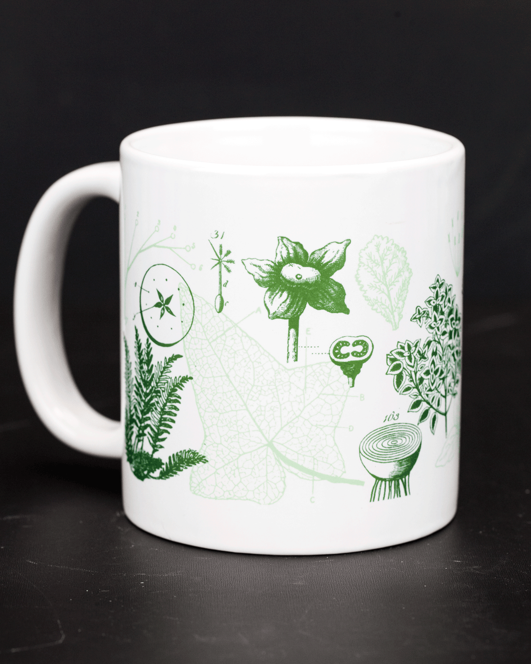 Botany Plants and Flowers Mug