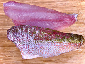 Load image into Gallery viewer, Florida Keys Yellowtail Snapper - Approximately 8-10 oz