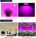 1/2Pcs Full Spectrum E27 E14 GU10 MR16 80/60/48 Red Blue Light LED Hydroponic Flower Veg Growing Lamp 6W/18W/24W Plant Grow Light