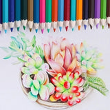 Pencils Oil Color Pencils for Art Students Professionals 48/72/120/160 Colors Water Soluble Colored Pencils_JDI