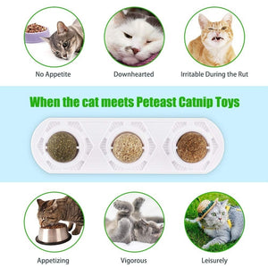 Pet Catnip Toy Edible Catnip Ball Safe and Healthy Cat Mint Ball Cat Family Chasing Game Toys Cleaning Teeth Protecting The Stomach