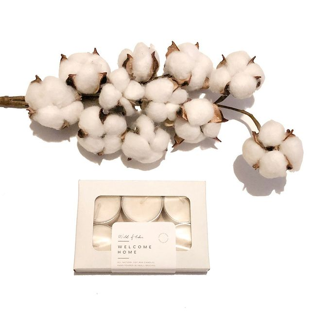 Welcome Home Soy Wax Tealight Candles