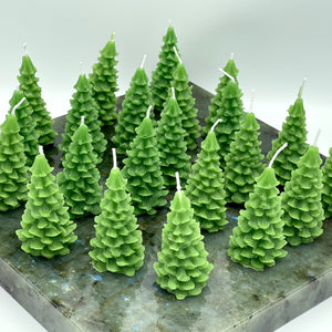 Small Evergreen