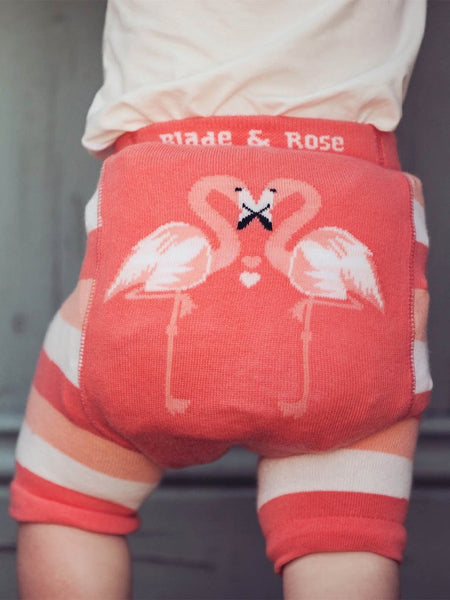 Blade & Rose Flamingo Shorts