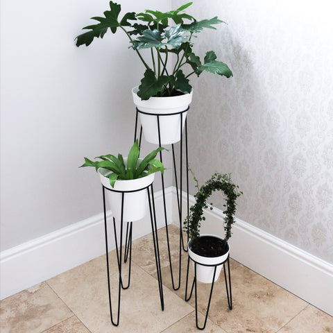 Plant Stands - Large Set