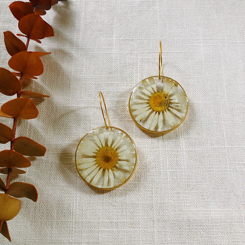 White Daisy with Hoops