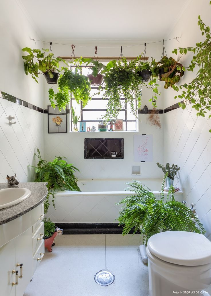 10 Best Bathroom Plants