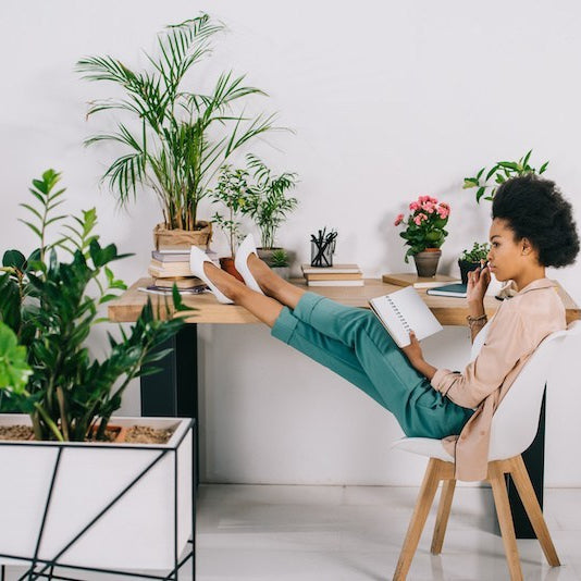 Top 5 Houseplants for Anxiety