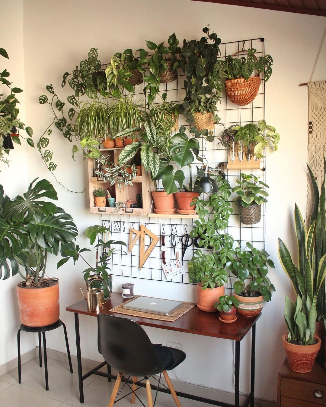 You Need These 6 Stress-Reducing Indoor Plants