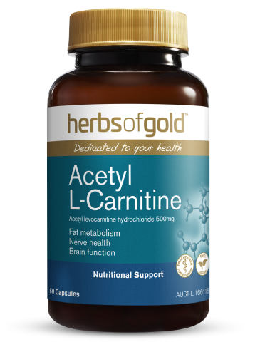 Herbs of Gold - Acetyl L-Carnitine