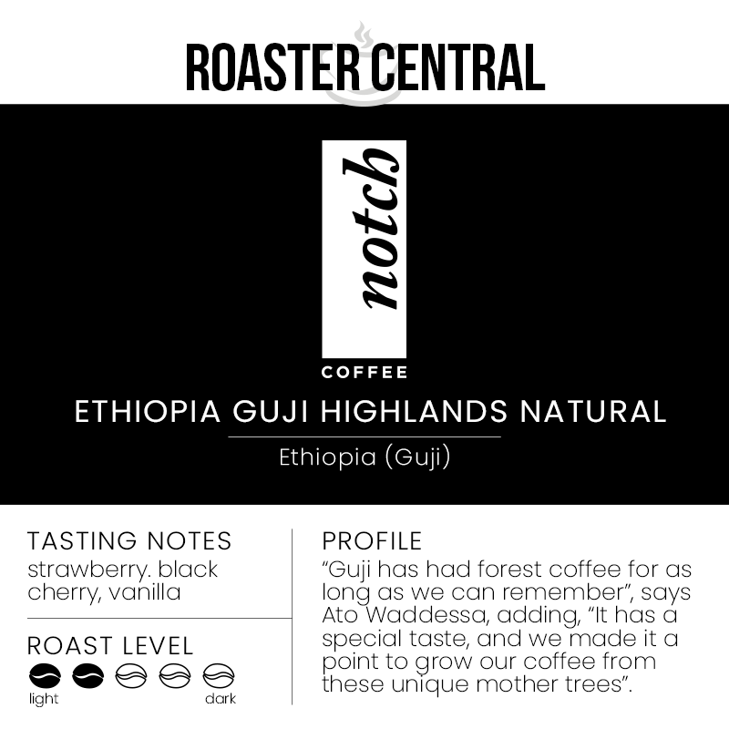 Notch Coffee Roasters - Ethiopia Guji Highlands Natural - Light Roast - Tasting Notes