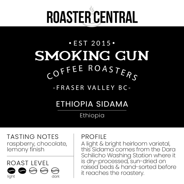 Smoking Gun Coffee – Ethiopia Sidama (454g)