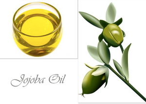 Jojoba Oil  (100% Natural Organic)