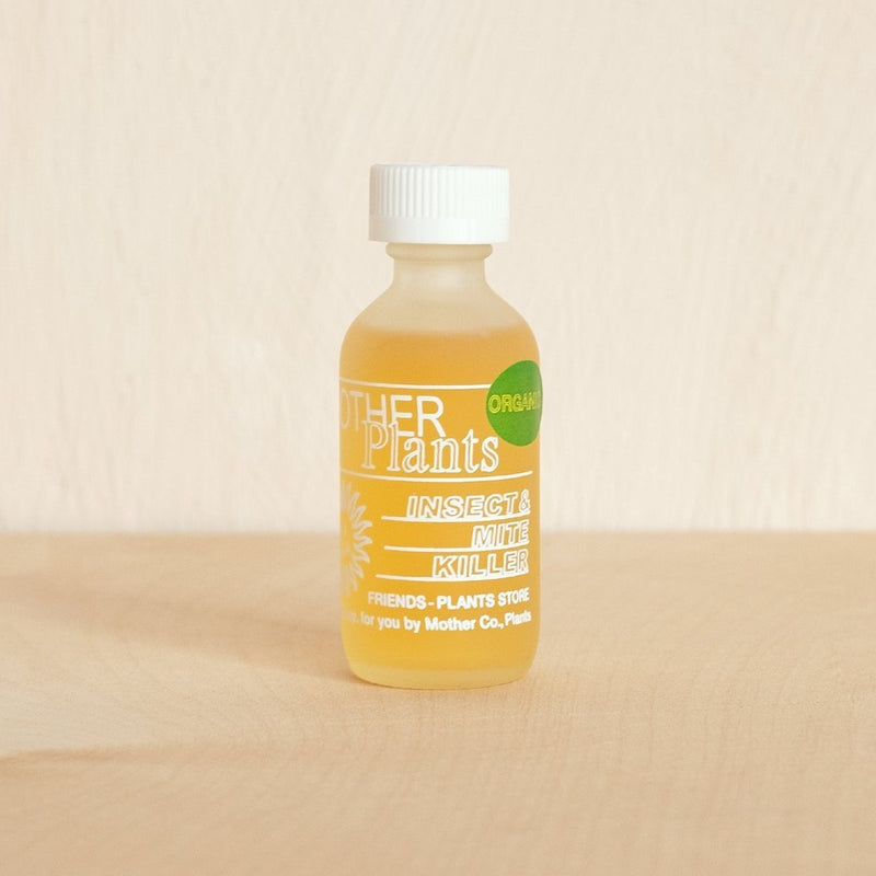 A woman is standing next to a well made bed, resting her hand gingerly on a lightly buffed wooden chair. A tuft of wet hair sits on her shoulder, on top of her sustainable waffle knit bath and spa robe. Her hand is in one of the large pockets and the robe's cord is tied around her waist in a bow. The sustainable, eco-friendly bamboo robe hits just below the knee, perfect for spring or summer, and is unisex.