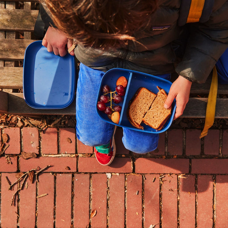 A little boy in a Patagonia down jacket is sitting on a school bench. We see from overhead his red sneakers, blue corduroy and blue backpack above the brick ground. He has brown hair. His child sized hands are holding the blue bento box, and he has set its sustainable bamboo lid down on the bench so he can eat the sandwich and grapes inside of it.